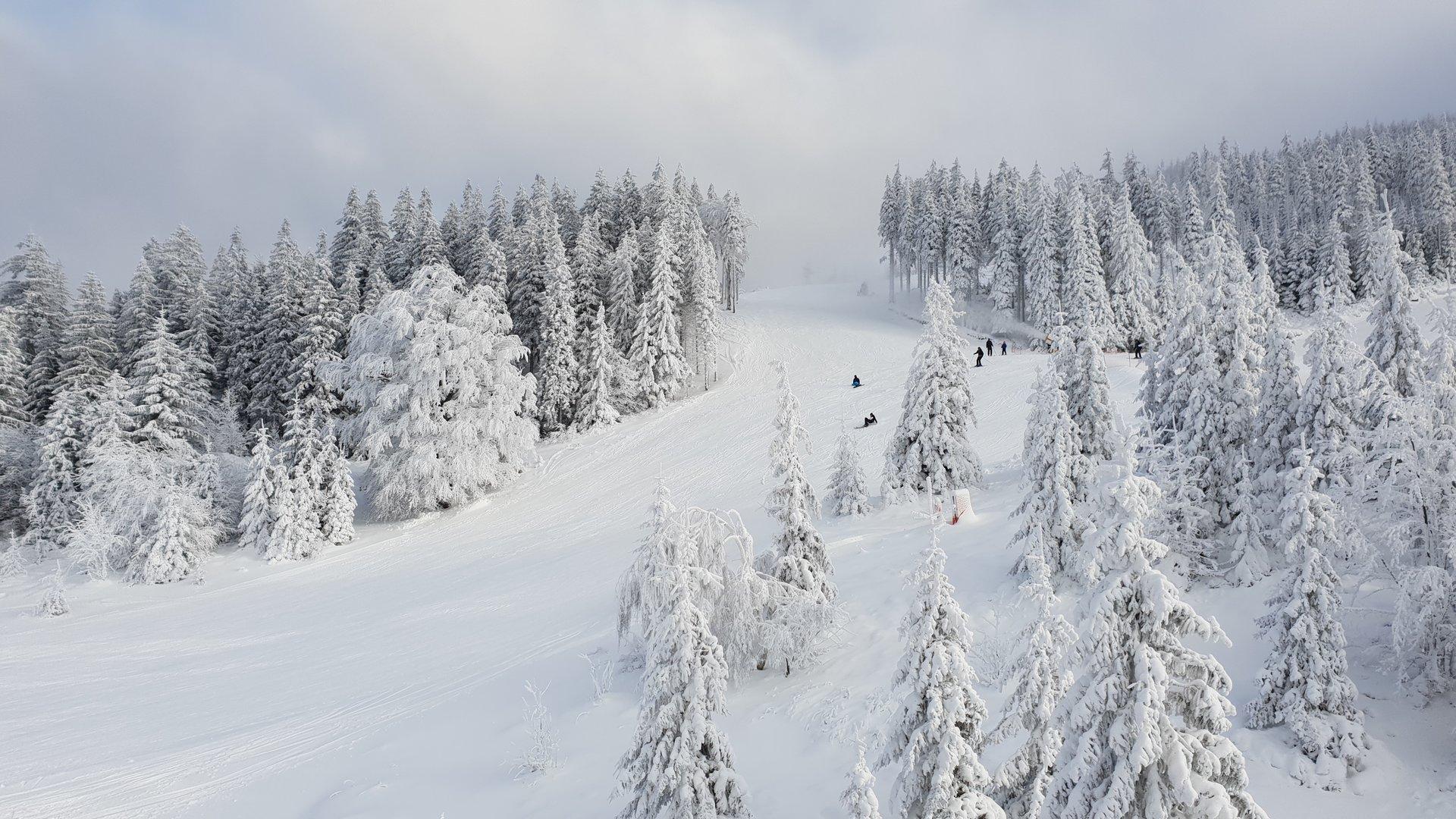 Skitoury na Skrzycznem