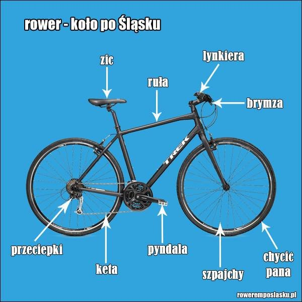 rower.jpg.f696af8fec9ef7b7ff737a2346f4b70d.jpg