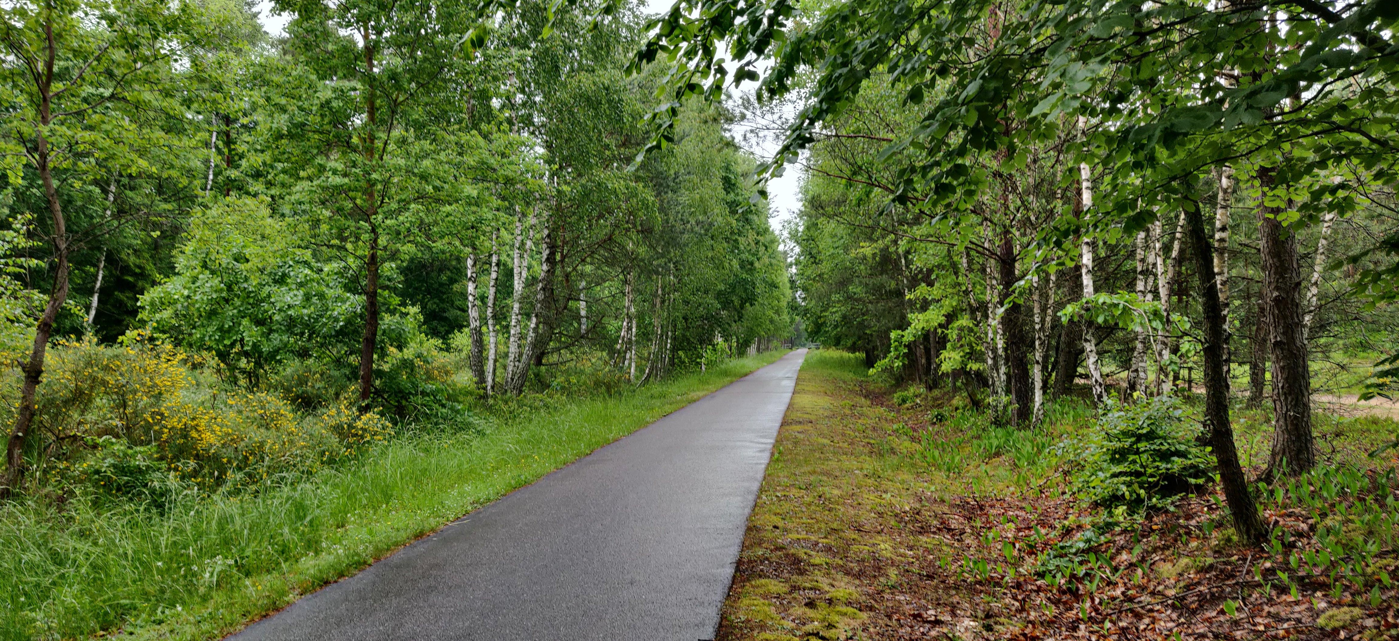Rowerowa czterodniówka z Bałtykiem na horyzoncie